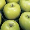"""Grattugia per frutta e verdura """"Fruttare"""" GEFU"""